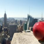 new york grande mela