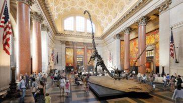 musei gratis new york