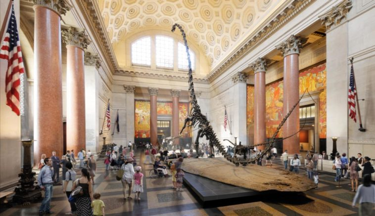 musei gratis new york